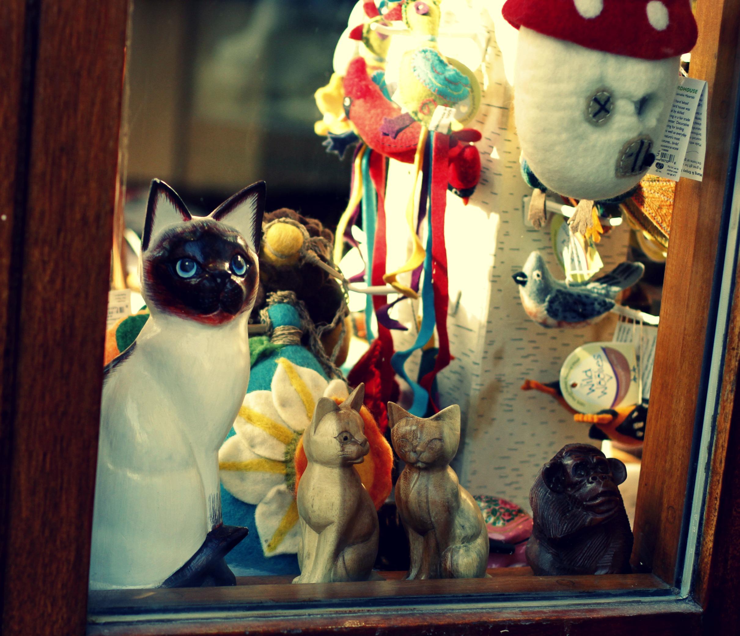 window shopping portsmouth