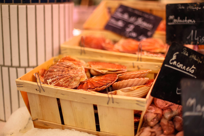 La Rochelle market scallops
