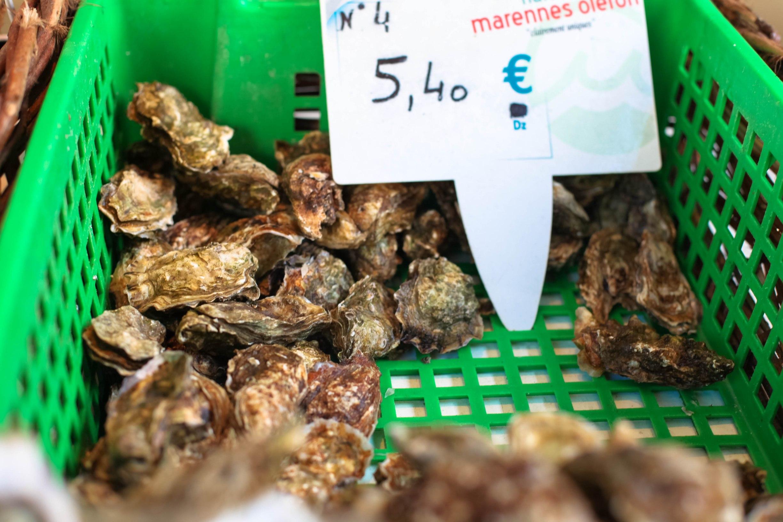 oysters La Rochelle
