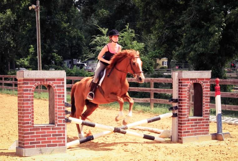 Holsteiner Horse jumping