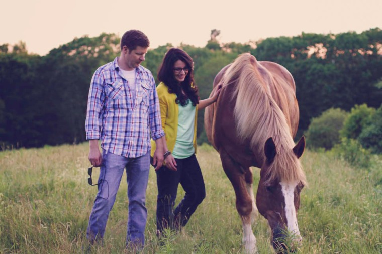 Oyster River Winegrowers Belgian horse Don