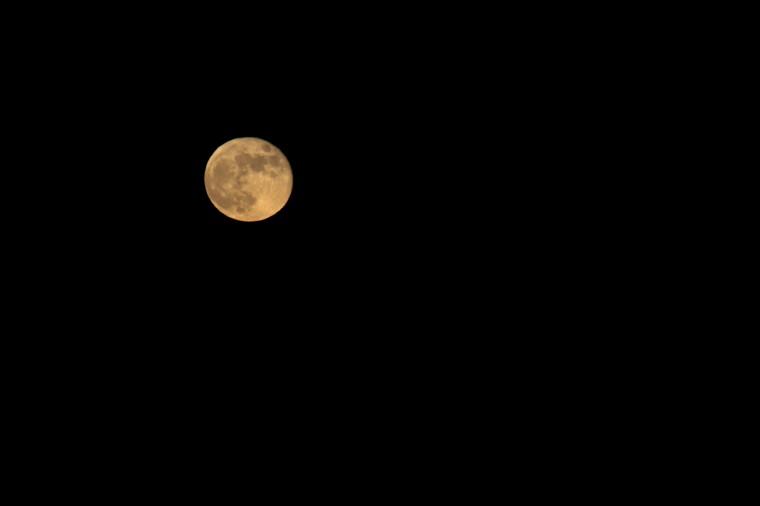Harvest Moon Galveston